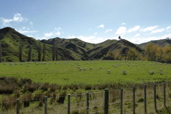 Kia Ora - Neuseeland
